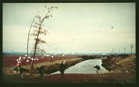 Photo Wall by Jeff Wall Study For U0027a Sudden Gust Of Wind After Hokusai