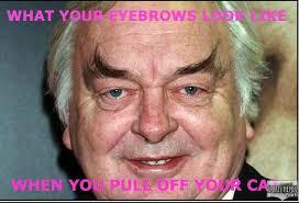 Eyebrows Meme - eyebrows meme