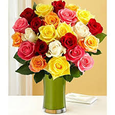 multicolored roses two dozen rainbow roses with free glass vase