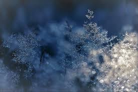 snow images pexels free stock photos