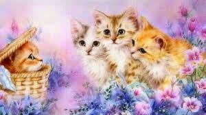 cool wallpapers for computer screen eletragesi cute animal wallpapers for desktop background full