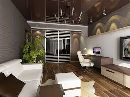 stylish wooden floor and cowhide rug for modern studio apartment