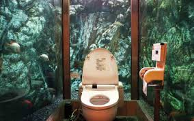 Coolest Bathrooms Coolest Bathrooms World 6 Dose Of Funny