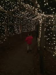 christmas lights and family time at boscobel sparkle review