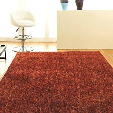 Rust Shag Rug Free Shipping On Orland Rugs Metallic Noodle Shag Rug Rust From