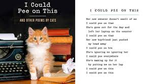 Halloween Cat Poems 6 Funniest Cat Books Ever Written By A Cat U2013 Purrfect Cat Breeds