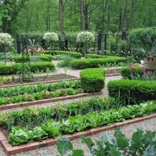 vegetable garden for small spaces vegetable garden ideas for shaded areas home design ideas