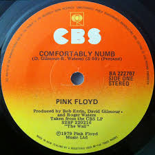 Comfortably Numb Keyboard Pink Floyd Comfortably Numb Vinyl At Discogs