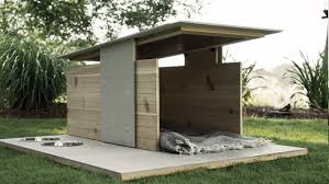 modern houses for sale pets unique lowes dog houses for inspiring pets furniture ideas