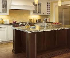 Transitional Kitchen Renovation Designs Toronto Transitional - Transitional kitchen cabinets