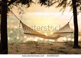hammock stock images royalty free images u0026 vectors shutterstock