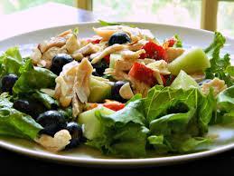 chicken u0026 fruit salad with raspberry dressing frugal hausfrau
