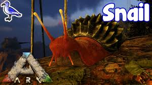 how to tame a snail in ark youtube