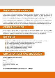 Sample Resume Format For Banking Sector 40 Best Resume Templates Images On Pinterest Resume Templates