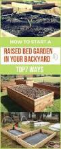 7151 best best of gardening on pinterest images on pinterest