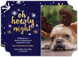 dog christmas cards dog christmas cards dog photo christmas cards