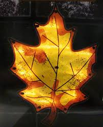 impact 16 lighted thanksgiving maple leaf window