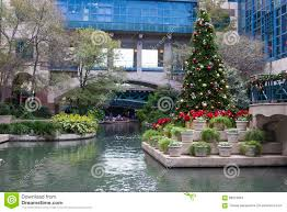 christmas trees in san antonio christmas lights decoration