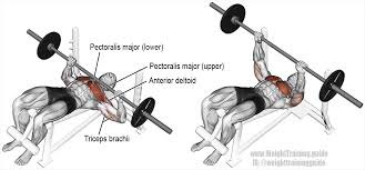 decline barbell bench press a compound push exercise great for