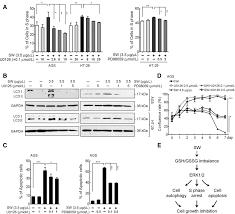 sarsaparilla smilax glabra rhizome extract inhibits cancer cell