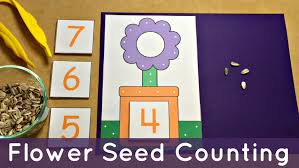 flower seed counting preschool math center and fine motor