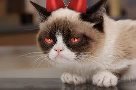 evil grumpy cat by happy lantern on deviantart