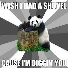 Shovel Meme - wish i had a shovel cause i m diggin you pickup line panda