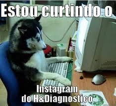 Birthday Dog Meme - disapproving dog memes quickmeme