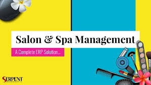 salon and spa management software salon and spa management system o