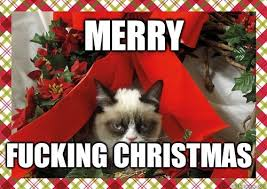 Merry Christmas Funny Meme - funny merry christmas images best business template
