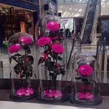 100 forever rose london world u0027s longest lasting roses