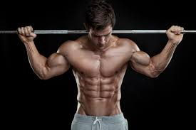 beginners guide to build bigger chest best chest exercises