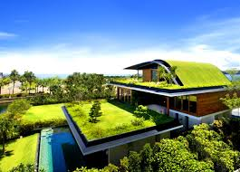 apartments pleasing futuristic homes ideas tree house designs