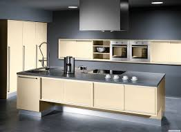 dark grey paint which is the best paint color idea for my kitchen home xmas
