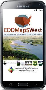 edd maps eddmaps bugwood apps