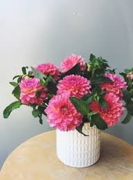 Bud Vase Arrangements The 5 Vases You Need For Having Fresh Flowers Cupcakes U0026 Cashmere