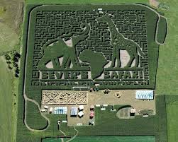 84 best corn mazes images on corn maze labyrinths and
