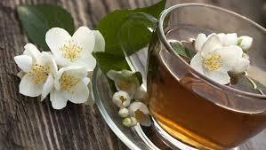 Teh Melati pr 1 pa 28 researchmommy vanili teh melati adalah unik di antara
