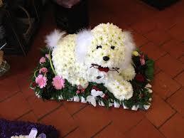 dog flower arrangement sitting 3d dog funky flowers west drayton greater london
