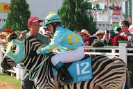 www.le-site-cheval.com/cinema/images/racing-stripe...