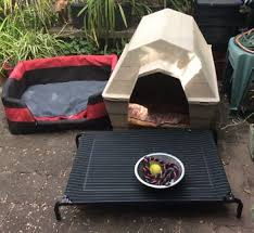 dog bed trampoline gumtree australia free local classifieds
