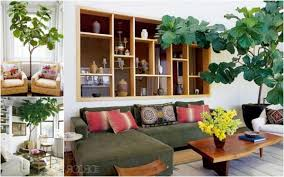 Imitation Plants Home Decoration Fabulous Plants For The Living Room Decorate Living Room With