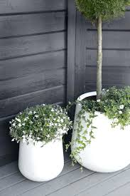 white indoor planter white indoor wall planters tall white indoor
