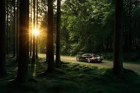 koenigsegg road nature trees forest sunlight sun koenigsegg road koenigsegg