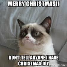 Cat Memes Generator - grumpy cat christmas meme generator alleghany trees