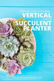 How To Make A Succulent Planter How To Plant The Vertical Circle Succulent Planter By Dalla Vita