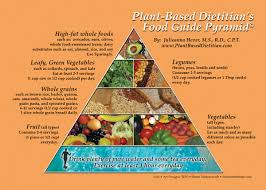 healthy colors everything you need to know about a vegan diet in less than 500 words
