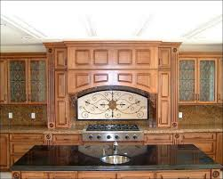 Decorative Cabinet Glass Panels by Kitchen Decorative Cabinet Glass Cheap Kitchen Cabinet Doors Bar