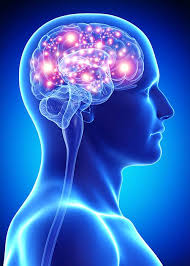 light up your brain what happened in my brain how alcohol affects brain funtion