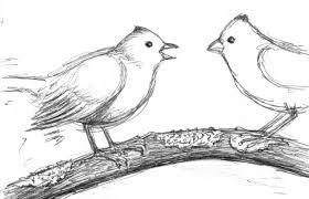 just around the corner bird babies